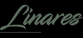 Linares Grupo Inmobiliario
